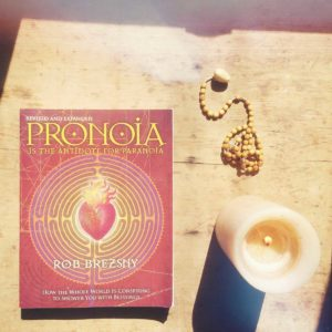 books-for-spiritual-awakening-pronoia