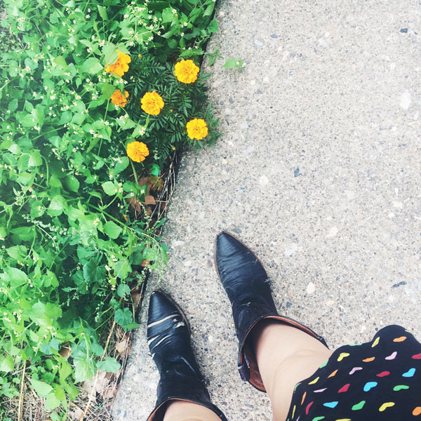 everyday-is-your-birthday-marigolds