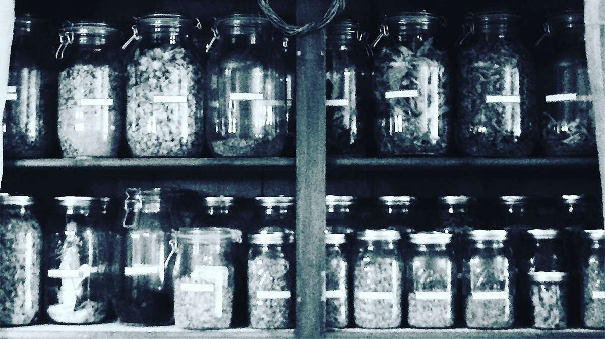 Susan Hess' shelves of perfectly labeled dried herbs