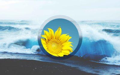 001 – Summer Solstice Medicine Story re: Sound Journeying, Meditation, Locked Doors, Dark Fantasy, Etc.